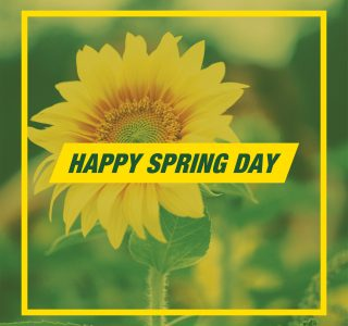 Spring Day Terms